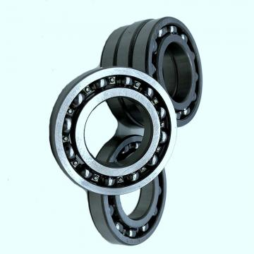 Deep Groove 6204 C3 6202zz 6022 SKF 6203 Bearing